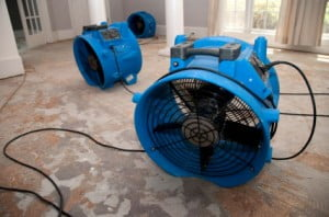 dry out fans