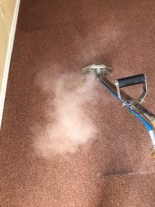Steam Clean Red Carpet