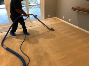 Carpet Cleaner Working